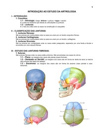 4.sistema_articular