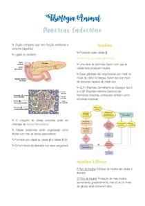 Resumo Pâncreas Endócrino - Fisiologia Animal