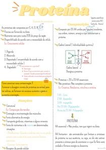 Proteínas - NNR