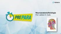 PREPARA AV2 NEUROANATOMOFISIOLOGIA ESTÁCIO