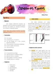 Lipídeos 3 (2)