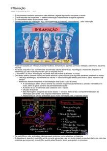Imunologia - Inflamação