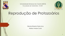 Reprodução de Protozoários