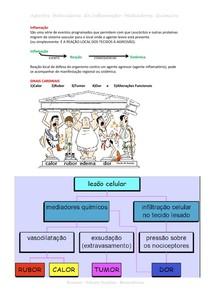 Inflamação - Eventos Moleculares - Mediadores Químicos
