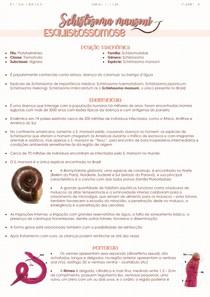 Schistosoma mansoni - Esquistossomose