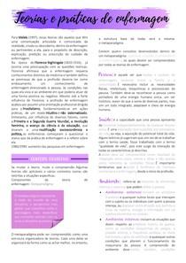 U1 Seção 2 - Teorias e práticas de enfermagem