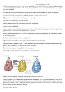 Transcrição Histologia