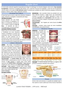 Região Oral e Faringe - resumo