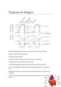 Diagrama de Wiggers - Ciclo Cardíaco