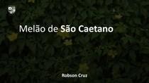 Melão de São Caetano