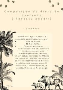 Porco-do-mato (Tayassu pecari) - Dieta