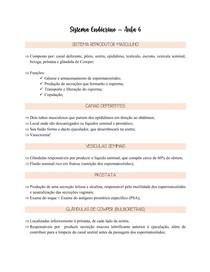Fisiologia Endócrina - Reprodutor Masculino