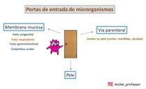 Portas de entrada de microrganismos