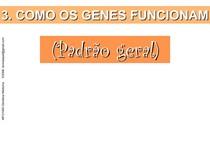 FunGeneIMP