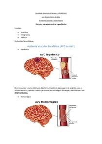 Anatomia aplicada a enfermagem - SNC