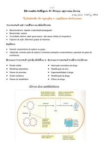 Tratamento de infecções e resistência bacteriana