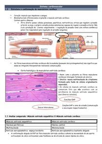Sistema Cardiovascular (1)