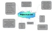 Analgesicos de ação central mapa