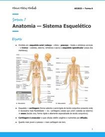 Semana 2 Anatomia Sistema Esquelético