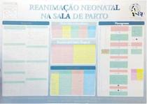 Manual de Reanimação Neonatal
