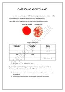 CLASSIFICAÇÃO NO SISTEMA ABO