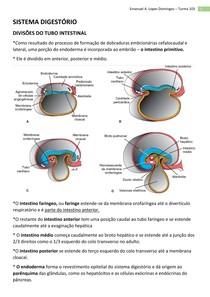 Embriologia - Sistema Digestório