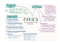mapa mental - aines