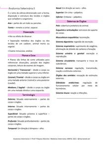 Resumo Introdutório Anatomia Veterinária II