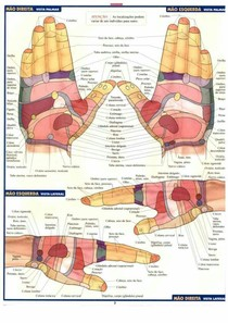 1558023742_Mapa das Mãos - Reflexologia (1)