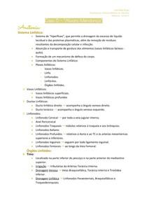 Anatomia - Caso 5 2 - 2ºP