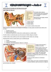 NEUROHISTOLOGIA Aula 4 - PD