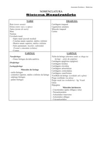Sistema Respiratário - Nomenclatura