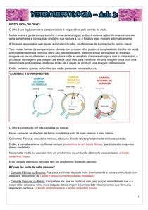 NEUROHISTOLOGIA Aula 3 - PD