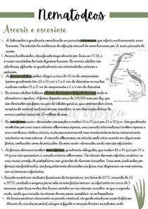 Neomatódeos - Parasitologia