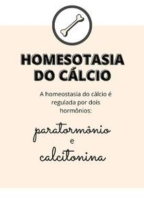 Homeostasia do cálcio