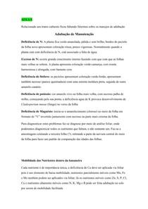 Resumo Aula 5 Banana (adubação, colheita, maturação, pragas)