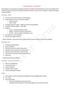 Hymenolepis nana - Himenolepíase