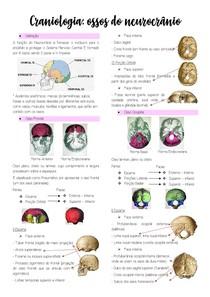 Craniologia: Ossos do Neurocrânio
