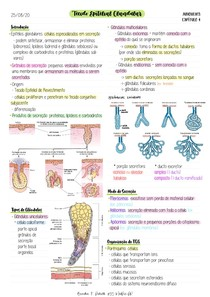 3.Tecido Epitelial Glandular