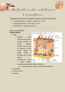 Sistema tegumentar - imunidade e características gerais da infecções bacterianas