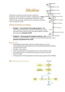 3. Glicólise