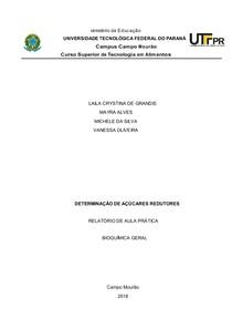 Relatorio Determinacao de Açúcares Redutores do Leite