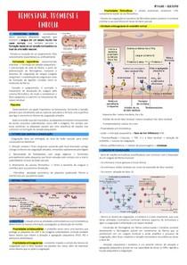 Hemostasia, Trombose e Embolia - Resumo