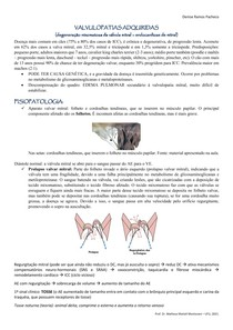 Endocardiose de mitral em cães