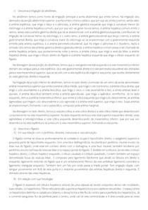Questões Sistema Gastrointestinal + Respostas (Anatomia, Fisiologia e Histologia)