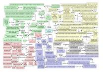 Crises epilépticas - mapa mental