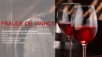 Fraude de Vinhos (apresentação da disciplina Análise Quantitativa 2)