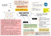 ORÇAMENTO PUBLICO ART 165 E 167