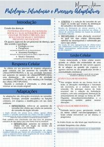 Processos Adaptativos da Patologia