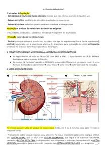 AULA 20 Elementos da função renal